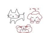 ねこ犬 クマ.jpg