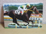 horse 001.jpg
