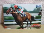 horse 002.jpg